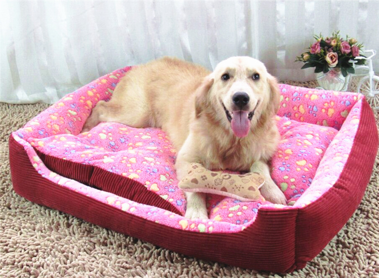 Best Sofa Beds Online to Give More Comfort to Pets